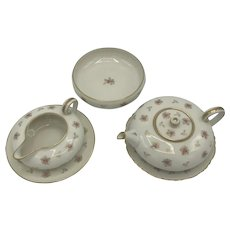 Antique American Porcelain Willets Belleek Tea Set c. 1885-1909