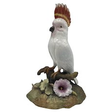 "Vintage Royal Crown Derby Porcelain Cockatoo Bird dated 1959 (""XXII"")"