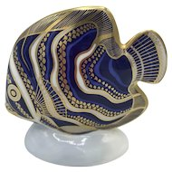 Royal Crown Derby Porcelain Koran Angel Fish with box dated 1994.