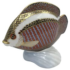 "Royal Crown Derby Porcelain Tropical Fish ""Gourami"" - WITH box dated 1990"
