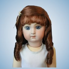 "HC 12.6"" Human hair wig for Antique or Vintage German or French doll."