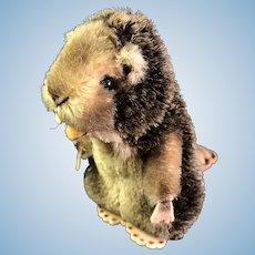 "Vintage Steiff Beaver ""Nagy"""