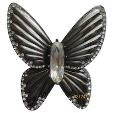 Nolan Miller's Los Cabos Butterfly Pin