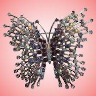 Nolan Miller's Stellar Butterfly Pin