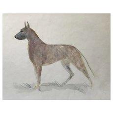 Great Dane watercolor