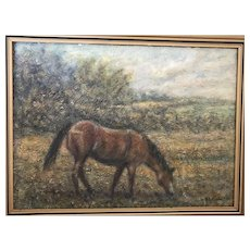 Bay Horse Oil Painting 1964