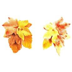 Vintage Celluloid Huge Fall Leaf Clip Earrings