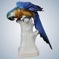 Karl ENS German  Porcelain Parrot
