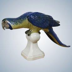 Royal Dux Porcelain Parrot