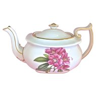 "Vintage Spode Copeland's China "" Rhododendron"" English Bone China Teapot"