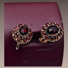 Rose Cut Garnet Earrings