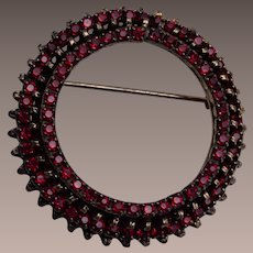 Warner Garnet Colored Circle Brooch