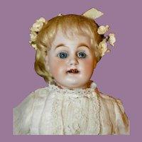 """Rare 12""""  Bahr & Proschild 309 Shoulder Head"""