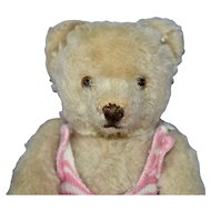 "Darling Little 8"" White Mohair 50s Steiff Bear"