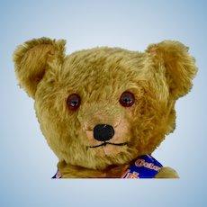Large Gold Mohair American 30s Teddy Bear