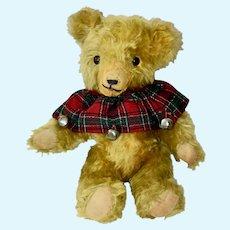 Precious Pintel Vintage Teddy Bear, Fluffy Mohair