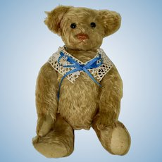 Extremely Rare 1906 Hecla Bear, Exceptionally Fine Condition