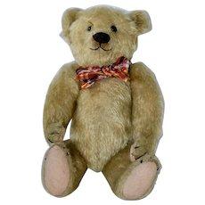 """12"""" Blonde 1909 Farnell Mohair Bear, Boot Button Eyes"""