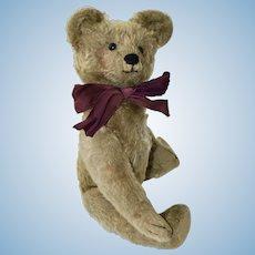 Rare American Mizpah bear C1907-8