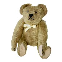 C 1909 Gold Mohair Ideal Bear, Cute Mousey Face