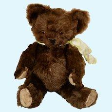 Dark Chocolate Brown Knickerbocher Bear, C 1930s