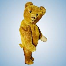 C 1920 Schuco Early Yes-No Bear, Gold Mohair