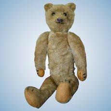 Rare 1905 Strunz Teddy Bear with 5-Claw Stitching