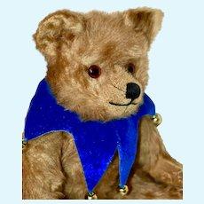 """Lovely Ginger Mohair 20s Farnell """"Pooh"""" Bear"""