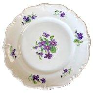 """Vintage Johann Haviland Violetta Dinner (10"""") Plates"""
