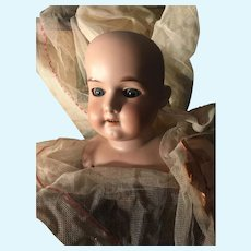 Grand Size Armand Marseille Bisque Shoulderhead w/ Big Blue Eyes ~ Very Pretty Face