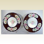 Two Gaudy Welsh Plates (Pair), Columbine Pattern,  Antique 19th C