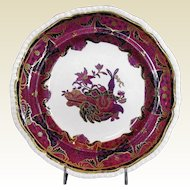 Antique Spode Plate, Frog Pattern,  Early 19th C