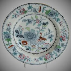 Ashworth/ Mason's Ironstone Plate, India Grasshopper, Antique Early 20th C