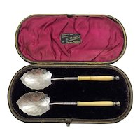 Pair of Victorian Aesthetic Movement Silver Plate Jam or Preserve Spoons in Original Leather Silk Lined Case