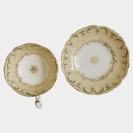 Coalport rococo cup and saucer pattern 4/249, c1840