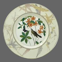 Royal Worcester Limited Edition Audubon Birds of America 'Swainson's Warbler' Plate