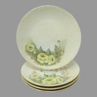 Early 1900's Hutschenreuther Hand Painted Plates ~ Selb Bavaria ~ Artist Signed