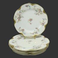 Charles Haviland Limoges Plates ~ Set of 4 ~ Schleiger #434c