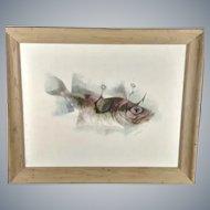Siegfried Gerhard Reinhardt Framed Lithograph Fish