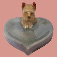 Yorkshire Terrier Collectable Trinket Dish