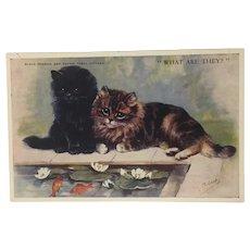 Vintage Mabel Gear Kitten Postcard