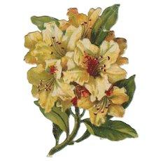 Victorian Die Cut Floral Flowers Bouquet Scraps Paper Cuts
