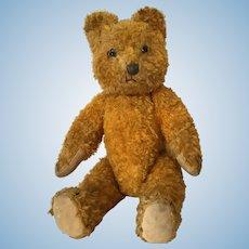 Mohair Teddy Bear Small Cinnamon Hump Back Glass Eyes