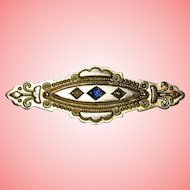 Victorian 9 kt Gold Etruscan Brooch with Sapphire Seed Pearls and Braided Hair 1.9g