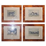 FREE SHIPPING Set of Four 19th Century English Prints Walnut Root Frame