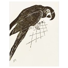 The Parrot - Original Xilography by Unknown French Artist Early 1900