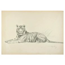Drawing of a Leaning Tiger by W. Lorenz