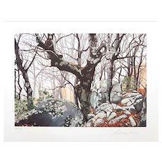In The Forest - Original Serigraph by Rolandi (Maurizio Coccia), Late 20th Cent