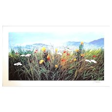 Wildflowers - Original Screen Print by L. Rossi Garzione, 1990s