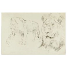 Original Drawing of two Lions by W. Lorenz